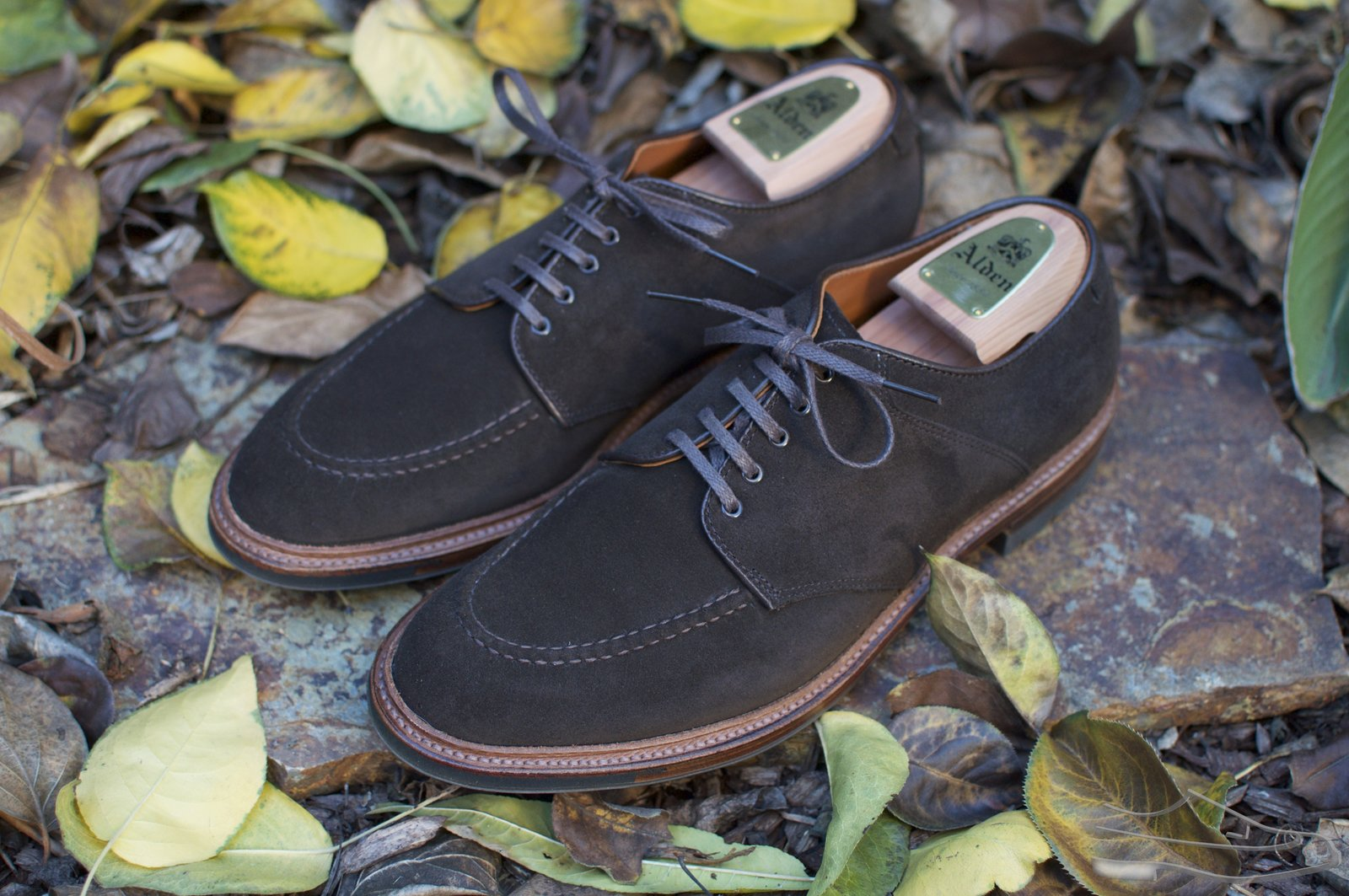 Alden Choco Suede U-Tip Saddle Shoes - 2020-11-28 - 1.jpg