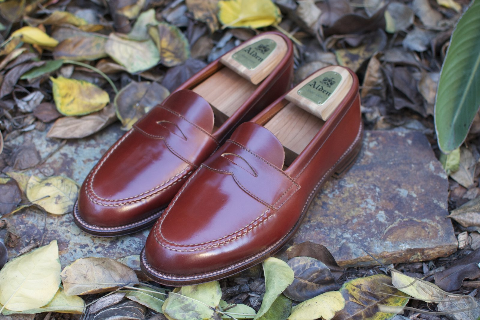 Alden Color #2 Unlined Shell Cordovan LHS - 2020-11-29 - 1.jpg