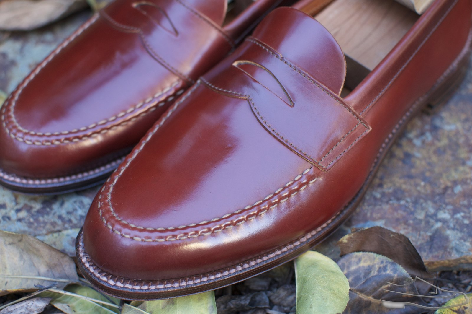 Alden Color #2 Unlined Shell Cordovan LHS - 2020-11-29 - 2.jpg