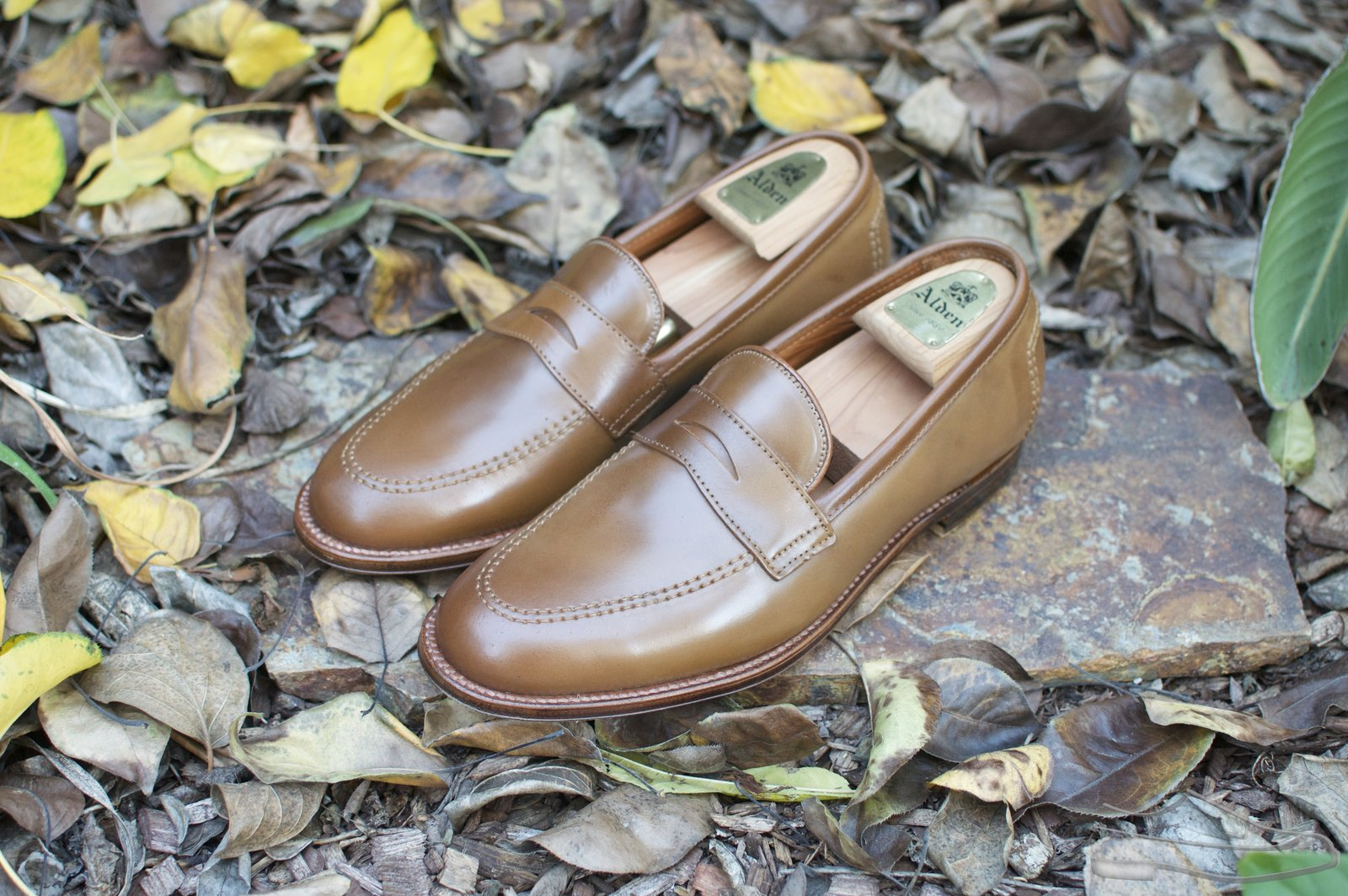Alden Whiskey Shell Cordovan Penny Loafers - 2020-12-02 - 1.jpg