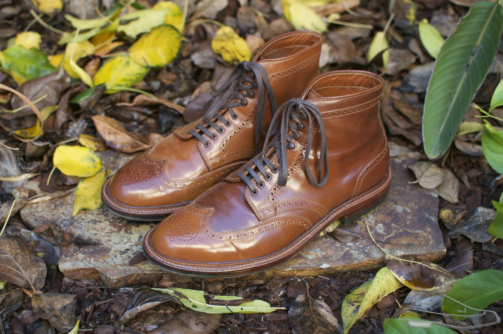 Alden Whiskey Shell Cordovan WT Boots - 2020-11-25 - 1.jpg