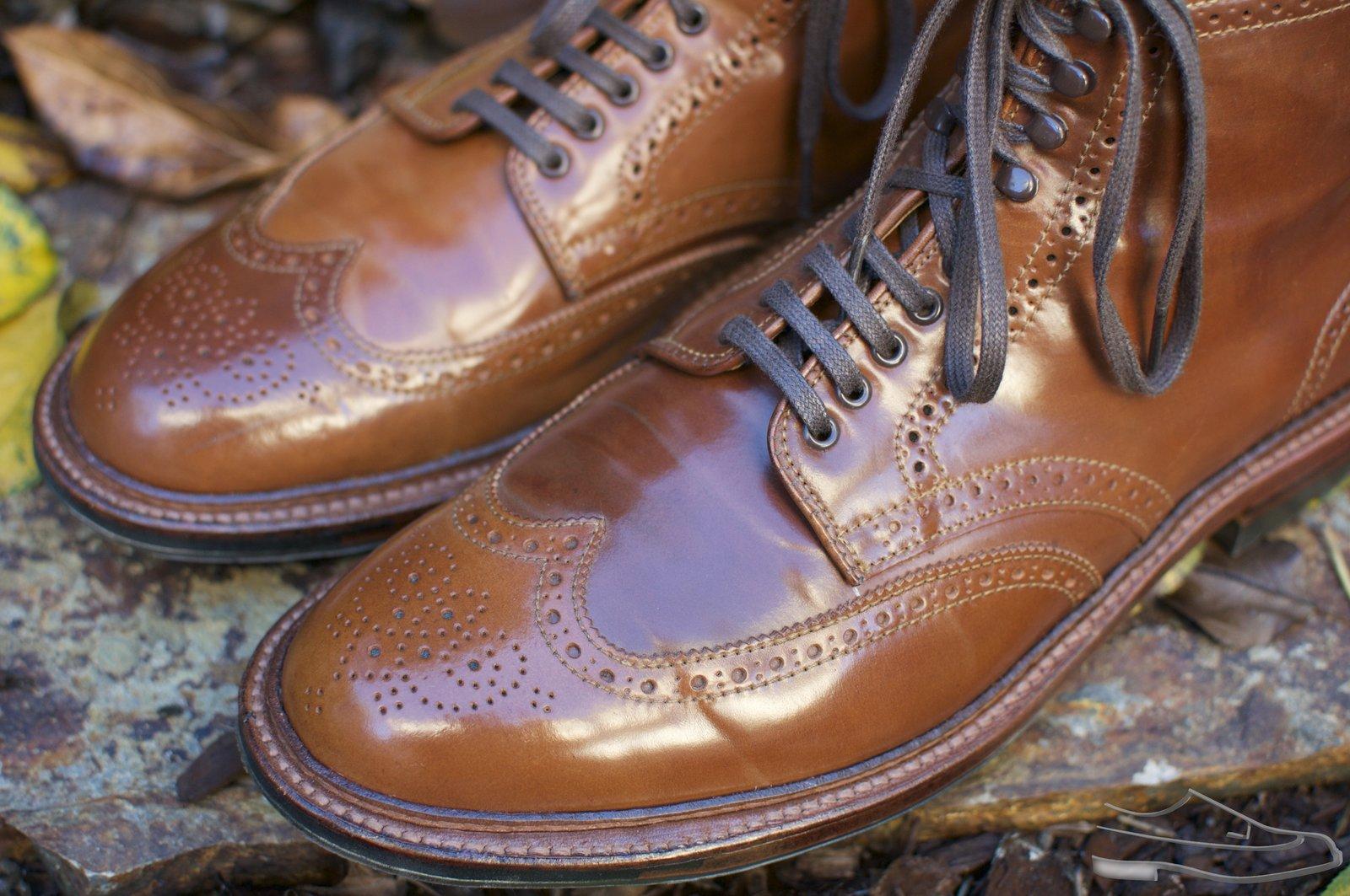 Alden Whiskey Shell Cordovan WT Boots - 2020-11-25 - 3.jpg