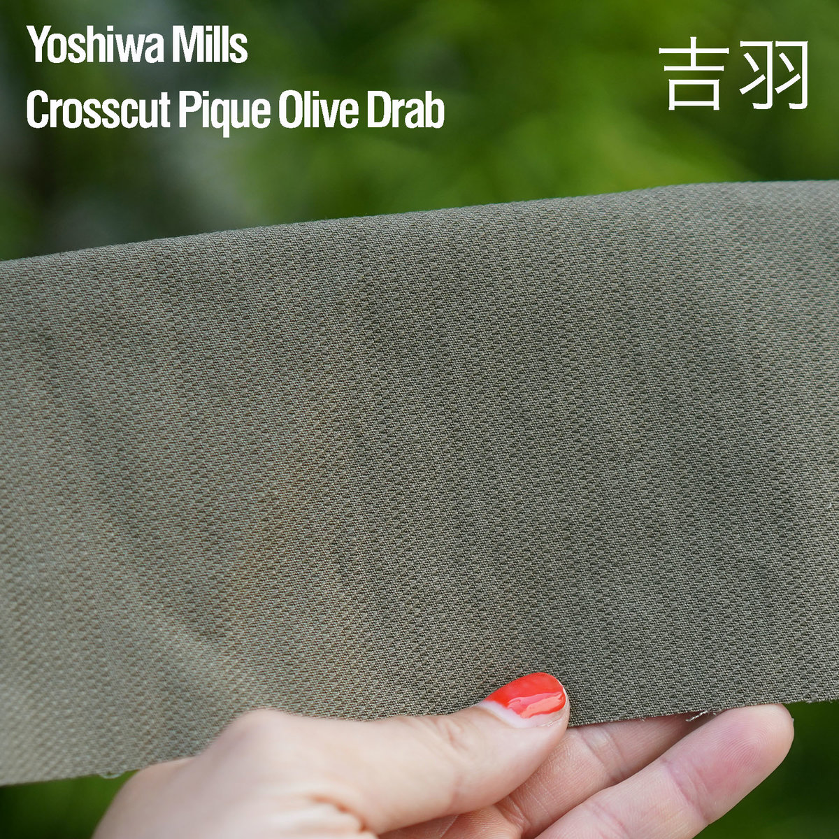 Crosscut Olive.jpg