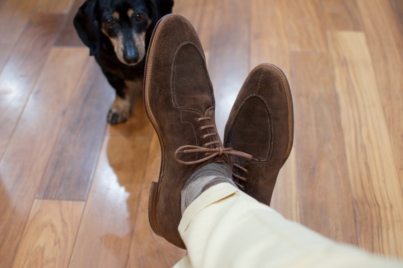 Edward Green Otter Suede Dovers - 2020-02-19 - 8.jpg