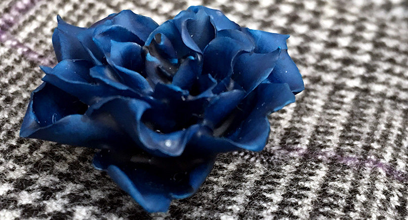 flower1a.jpg