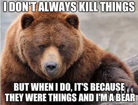 Funny-Bear-Meme-I-Dont-Always-Kill-Things-Image.jpg