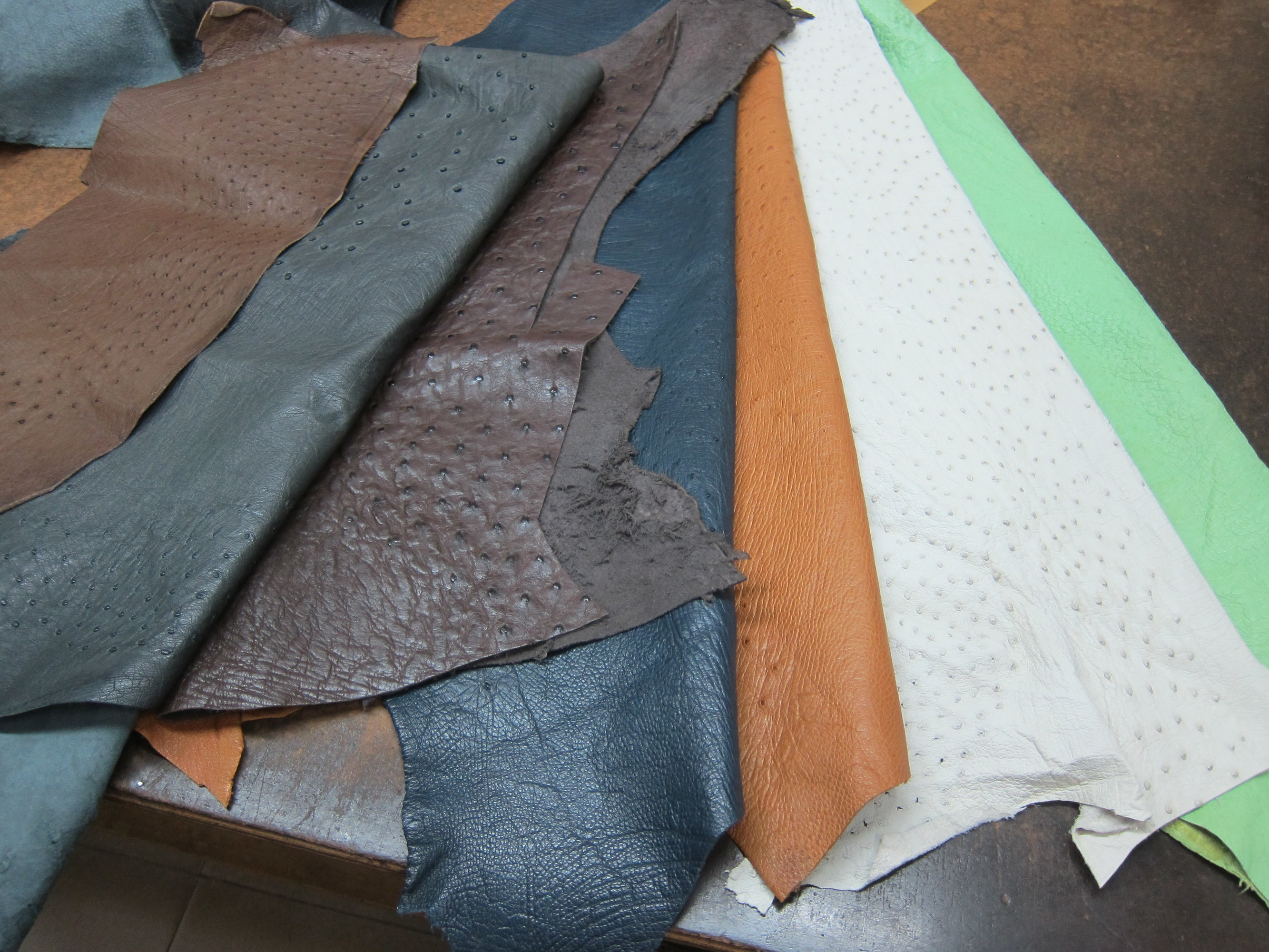 ostrich leather 鴕鳥皮.JPG