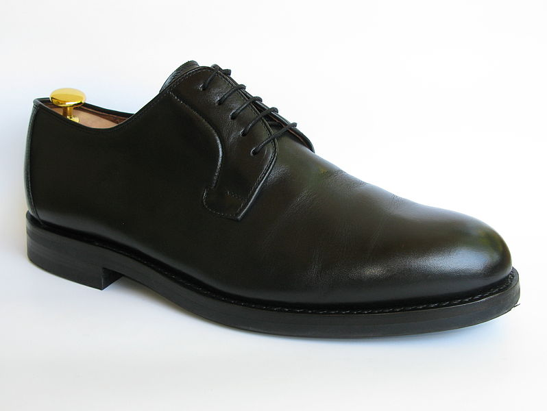 File source: http://commons.wikimedia.org/wiki/File:Shoe-Blucher-Black_with_rubber_sole.jpg