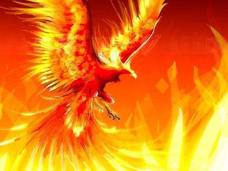 1288504878_470x353_fire-phoenix.jpg