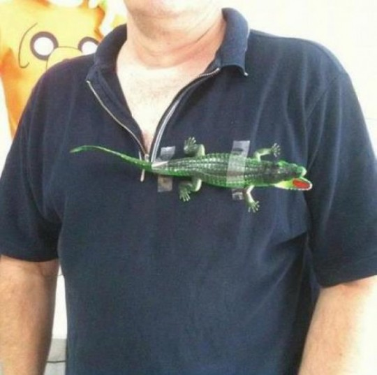 bac46f54ba4a Fake Lacoste shirts I ve seen tend to look more like this