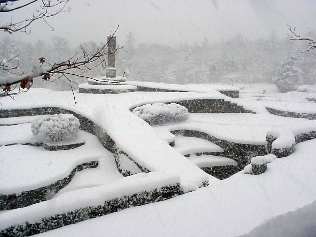 WinterSue2.jpg