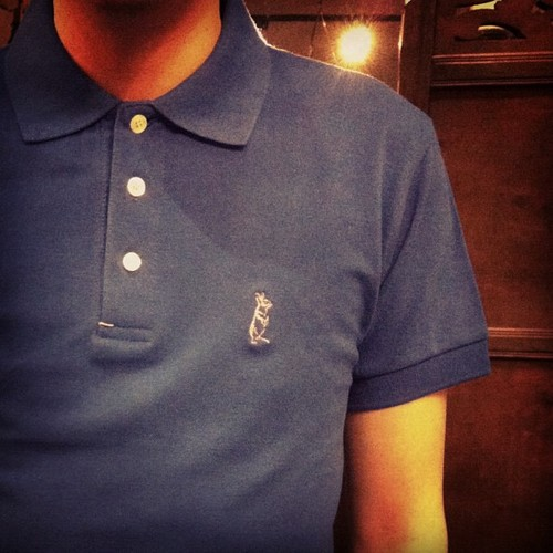 What is a good polo shirt brand i need very high quality for Good t shirts brands