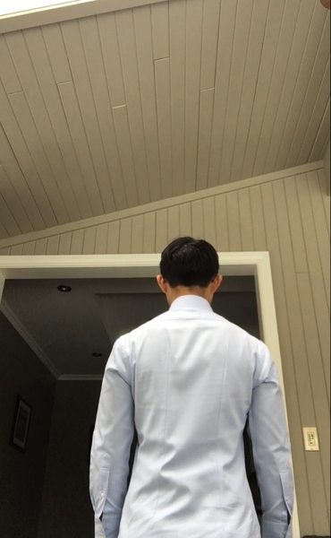 Dress Shirt 1 (back).png