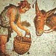 Gaius Pompeius Trimalchio