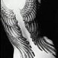 Wings_2006