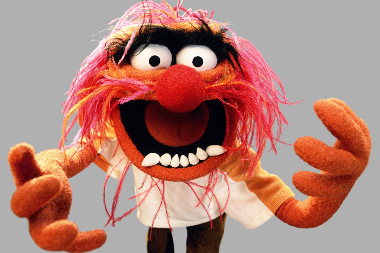 150921-news-the-muppets-animal.jpg