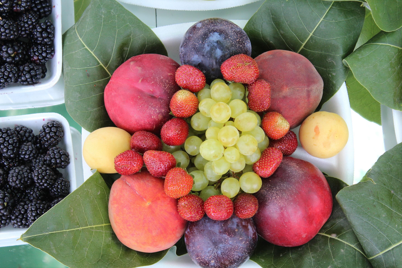 Mixed_fruit.jpg